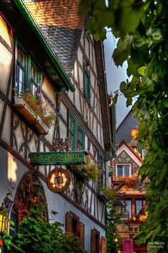 #GERMANECO.COM #SWD #GREEN2STAY Rudesheim, Germany by Tio Cheo.  This is an awesome picture of an even more awesome German town!