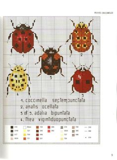 Gallery.ru / Фото #11 - MARABOUT Insects - tatasha