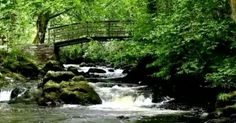 A video of a little known waterfall in the Republic of Ireland makes an unlikely soundtrack for insomnia sufferers People Around The World, All Over The World, Insomnia Causes, Nature Sounds, Calming Sounds, Learn Yoga, Trouble Sleeping, Republic Of Ireland, Nature