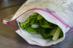 how to keep salad fresh, lettuc fresh, how to store fresh spinach, keeping spinach fresh, storing fresh spinach, how to keep spinach fresh, how to keep vegetables fresh