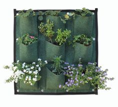 Vertical Garden Solutions Creating Green Vertical Walls. See More. Dallas  Calls These Wooly Pockets. (PlantyPockets, Etsy.com)