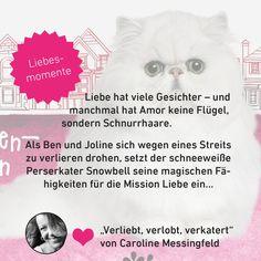 """Forever by Ullstein on Twitter: """"Ein Kater als Liebesengel? Gibt's im Roman unserer Autorin @CMessingfeld! #Valentinstag #romance https://t.co/EPOl0RSORc"""""""
