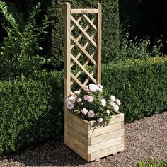 Square Planter & Lattice Pressure treated to protect against rot Natural timber finish attractive lattice back, ideal for climbing plants Can be painted or stained if desired Dimensions: Height: Width: Depth: Approximate c Planter Box With Trellis, Wooden Planter Boxes, Wooden Flower Boxes, Flower Trellis, Diy Trellis, Wood Trellis, Plastic Lattice, Climber Plants, Lattice Garden