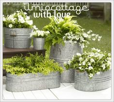 Gardening Container Galvanized Metal Flower and Fern Planters - Front door flower pots are the perfect way to show your love of plants if you have little or no yard for a garden. See the best ideas and designs! Fern Planters, Metal Planters, Flower Planters, Diy Planters, Flower Pots, Planter Ideas, Front Porch Flowers, Ideas Para El Patio Frontal, Garden Pests