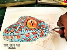 Progress 2 pic of my Tokay Gecko. Drawing with a Tombow Irojiten Colored Pencils