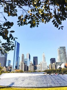 Maggie Daley Park Chicago Skyline Chicago Photography City