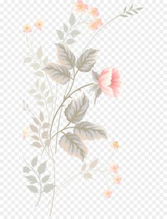 Need some grilling gift ideas? ✩ Check out this list of creative present ideas for bbq and grilling fans Watercolor Flowers, Watercolor Paintings, Botanical Illustration, Illustration Art, Overlays, Flower Png Images, Raw Pictures, Design Floral, Cute Cartoon Wallpapers