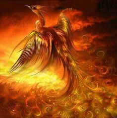 NEW DIY Diamond Painting Cross Stitch Red Phoenix Bird Drawings Pictures of Crystals Whole Square Diamond Emboridery Mosaic(China (Mainland)) Mythological Creatures, Fantasy Creatures, Mythical Creatures, Dark Creatures, Phoenix Drawing, Phoenix Art, Pictures Of Crystals, Bird Drawings, Pictures To Draw