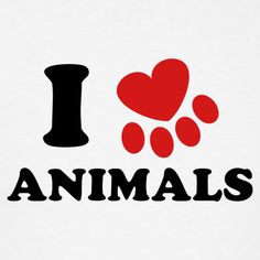 I love animals - Bing Images