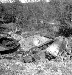 Blown  up  king tiger in the hills of normandy
