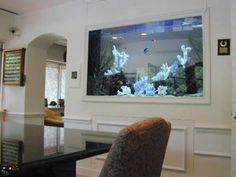 7. Одна из комнат - гостиная, смежная со столовой. Внутри стены между ними аквариум размером 2,5 на 0,9 м с морской водой.