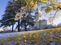 Old Main Hill, Utah State University. Fall to winter transition is beautiful.