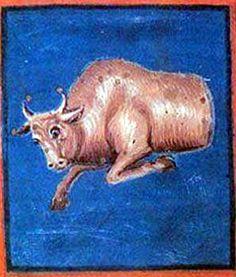 Aratea di Leiden, Toro
