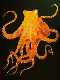 OctopiOctopi by ~PenguinPatters on deviantART