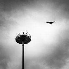 """""""Urban Islands"""" by David Linke on 500px"""