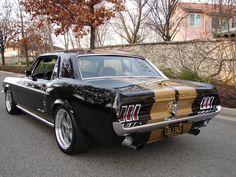 """★ Mustang HT Black & Gold """"Hertz"""""""