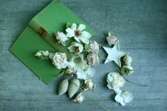 Old book and flowers