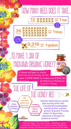 Ever wondered how many honey bees it takes to make a jar of our Organic Honey? Or what bees do throughout their lifetime? See our infographic to find out. Honey Facts, Bee Do, Local Honey, How Many, Save The Bees, Food Industry, How To Find Out, How To Make, This Is Us