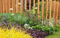 The SeeAbility Garden RHS Chelsea Flower Show 2013. The garden focuses on the specific sight conditions of Glaucoma, Cataracts, Diabetic Retinopathy and Macular Degeneration, and translates these conceptually through its ingenious design, including a range of different materials and the use of a specific planting colour palette -