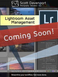 Coming Next Week: Lightroom Asset Management