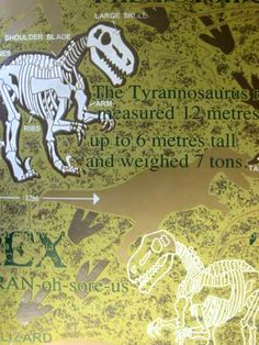This Dinosaur Blown Wallpaper is ideal for adding a dino theme to little dinosaur fans room. The high quality paper has cool glow in the dark effects on the T-Rexs as well as educational facts about dinosaurs all over it. Use it to create a feature wall or on an entire room for a fabulous dinosaur theme. FREE DELIVERY