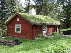 Swedish log cabin in the classic red color with living green roof.