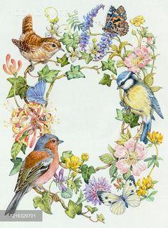 Birds, butterflies, and flowers Art Floral, Fleurs Art Nouveau, Vogel Illustration, Bird Drawings, Little Birds, Bird Art, Pet Birds, Cute Art, Painting & Drawing