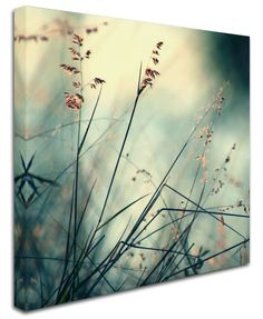 About Hope' by Beata Czyzowska Young Photo Graphic Print on Canvas