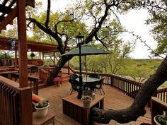 Garden deck/terrace built around mature tree trunks.