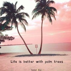 44 Ideas For Palm Tree Quotes Life Ocean Sunset Beach, Beach Bum, Palm Beach, Palm Tree Quotes, Quotes About Palm Trees, Beach Quotes, Beach Sayings, Ocean Quotes, I Love The Beach