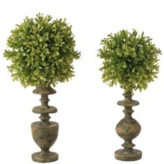 RAZ Grande Estate Inch Boxwood Topairy on Finials, set of 2 Boxwood Topiary, Topiary Trees, Industrial Tabletop, Fall Decor, Holiday Decor, Mad Hatter Tea, Apothecary Jars, Hedges, Silk Flowers