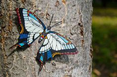 butterfly-effect-Andreas-Preis-4