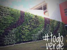 #todoverde
