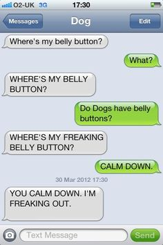 We compiled a hilarious list of messages between you and your dog (i. if he could send text messages). The funny conversations tickled our funny bone to pieces. Hope you find them as entertaining too. Funny Dog Texts, Funny Dogs, Humor Texts, Hilarious Texts, Hilarious Animals, Funny Kitties, Funny Horses, Adorable Kittens, Kitty Cats