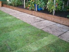 Image of flowerbed retained using a railway sleeper - for fruit/veg beds in the front garden.
