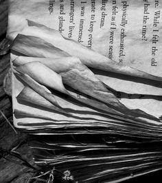 Book Pages, San Rafael, 2008, Robert Hecht