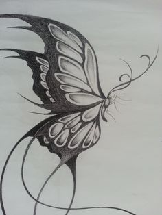 73341ffb593 Butterfly Sketch New butterfly Drawing Pencil Pencil Sketch butterfly  Drawing Pencil
