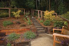 terraced garden - Google Search