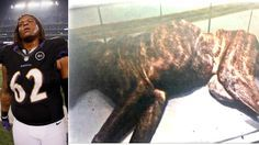 Terrence Cody - NFL player for The Baltimore Ravens - neglected and starved his dog to death.