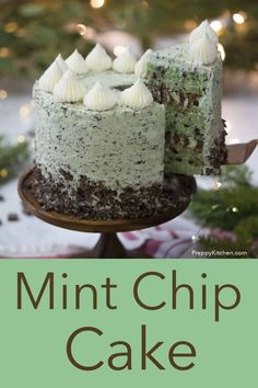 Chocolate Chip Cake, Mint Chocolate Chips, Chocolate Desserts, Chocolate Chocolate, Mint Desserts, Delicious Desserts, Food Cakes, Cupcake Cakes, Mint Cake