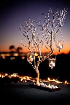Love the candles hanging from branches - the reception site has a beautiful view of the manhattan skyline. This would be great!  #thebridalcollection