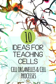 teaching biology Here are 10 easy tips for teaching cells, cell organelles and cell processes in your classroom Biology Lessons, Science Lessons, Life Science, Science Activities, Science Interactive, Science Experiments, Physical Science, Earth Science, Science Projects