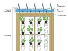 Turn a Sunny Window into a Hydroponic Garden - this would be fun to do