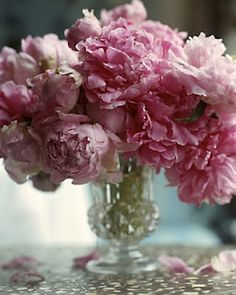 690 Best Pretty Pink Flowers Images Beautiful Flowers Gardens