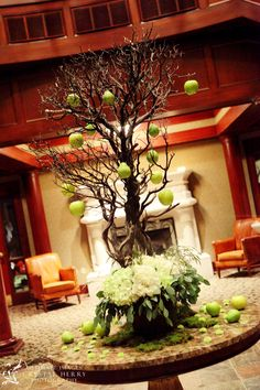 A beautiful #manzinita #tree to greet your guests. #Turning Stone #Shenandoah #foyer