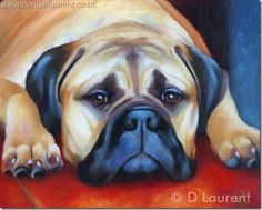 Bella   This lovely lady is Bella, a beautiful bullmastiff. She's a gorgeous girl and it's such a wonderful pose, with her head between her paws, daydreaming. She was great to paint.