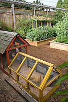 Chicken & Rabbit coops in back of small space backyard organic sustainable garden - I LOVE this garden.