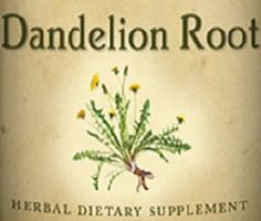 All Natural DANDELION ROOT Liquid Tincture Herbal Extract for Healthy Digestion Bowel & Liver Function Herb Dietary Supplement USA
