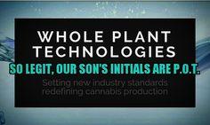 @wholeplanttech takes #cannabis very seriously...we even gave our son the initials P.O.T. #bestparentsever #wholeplanttech #WholePlantTechTraySystem #hydroponics #aeroponics #365growdays #30PercentMoreProfitable #topshelfflower #womengrow #pot #hemp #cbd #cannabismedicine #xxy #autoimmune by canna_ms._