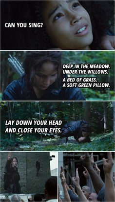 10+ Best 'Katniss Everdeen' Quotes   Scattered Quotes